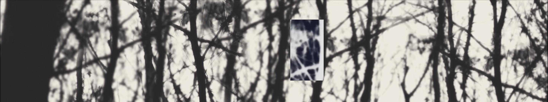 Screen Shot 2019-07-09 at 9.51.44 PM